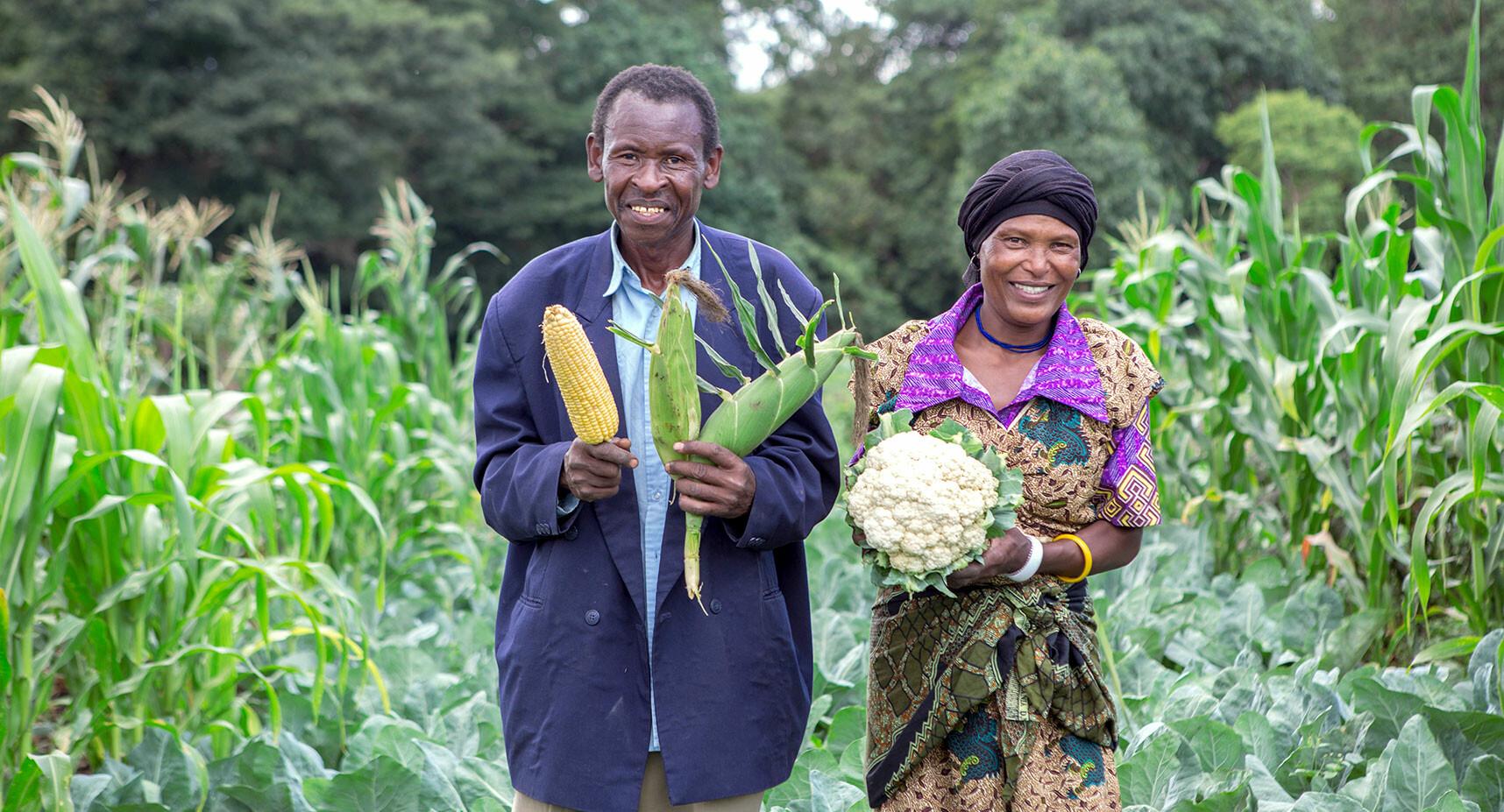 Become a better farmer